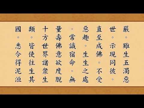 《无量寿经》读诵版 (全集)